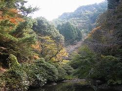 s25-1105陶山神社池.jpg