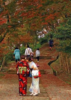 陶山神社 紅葉.jpg