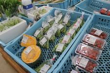 地域で採れた新鮮野菜や旬な食材を多数取り揃えております。