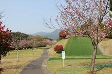 公園には、芝スキーやスプリング遊具、回転式ジャングルジムなどがあります。
