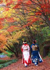 【第9回「秋の有田」写真コンテスト】受賞作品決定!【「秋の有田」写真展】開催中!