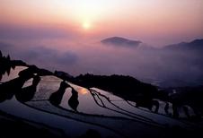 棚田の朝日は絶景です。