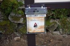 無料配布のガイドブックです。これを見れば唐船城のことがよくわかります。